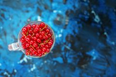 Red currant on a blue background. Top view. The concept is healt. Hy food, vitamins, diet and vegetarianism Stock Photos