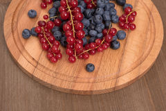 Red currant and blueberry Royalty Free Stock Images