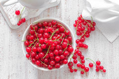 Red currant. In a bowl royalty free stock photo