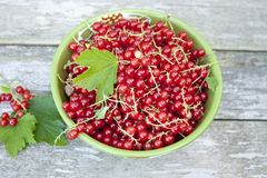 Red currant. In a bowl Royalty Free Stock Photos