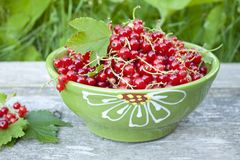 Red currant. In a bowl Stock Photo