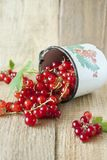 Red currant. In a bowl Stock Photos