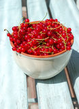 Red currant in bowl. Red currant in a bowl Royalty Free Stock Image