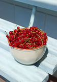 Red currant in bowl. On blue wooden background Royalty Free Stock Photo