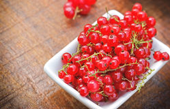 Red currant in bowl Stock Images