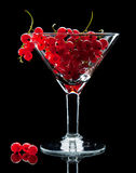 Red currant bunch in glass and berries Royalty Free Stock Photo
