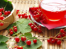 Red currant. Busket with red currant and cup on wooden dask Stock Images