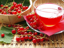Red currant. Busket with red currant and cup on wooden dask Royalty Free Stock Photography