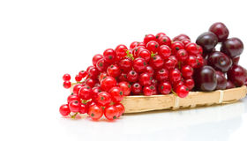 Red currant and cherry, close-up on white background Stock Photography