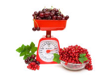 Red currant and cherry, kitchen scale on white background. Stock Photos
