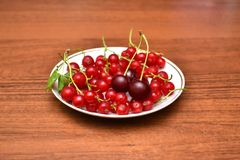 Red currant and cherry in the white plate on a wooden table. Red currant and cherry in the white plate on a wooden table Royalty Free Stock Photos