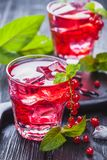 Red currant cocktail with ice and fresh mint on a black wooden table Royalty Free Stock Image