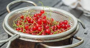 Red currant in a colander. On a black wooden table royalty free stock images