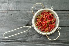 Red currant in a colander. On a black wooden table royalty free stock image