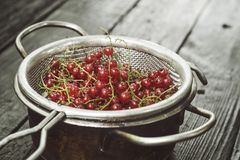 Red currant in a colander. On a black wooden table stock photos