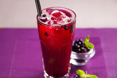 Red currant cold tea Royalty Free Stock Image