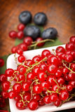 Red currant and cranberry Stock Photo