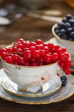 Red currant  in cup. Red currant berries  in cup on wooden table Stock Image