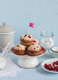 Red currant cupcakes on a blue background. Delicious summer dessert. Stock Images