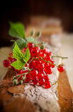 `Red currant. Red currants on rustic wooden table Royalty Free Stock Images