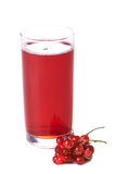 Red currant drink royalty free stock photography