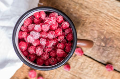Red currant frozen Stock Images