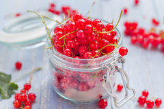 Red currant fruit jar wooden table Royalty Free Stock Photo