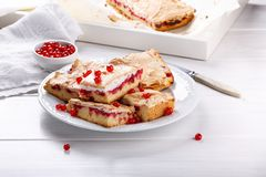 Red currant fruit pie bars with meringue on top.  stock photography