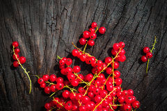 Red currant fruit scattered wooden bench table Stock Photography