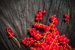 Red currant fruit scattered wooden bench table Stock Images