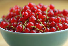 Red currant fruits in a bowl. On a wooden table Stock Photography