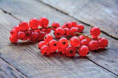 Red currant in garden. Red currant on wood table stock photos