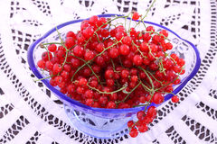 Red Currant in glass bowl Royalty Free Stock Image