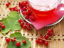 Red currant. Glass cup with compote and red currant on wooden dask royalty free stock image