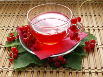 Red currant. Glass cup with compote and red currant on wooden dask Stock Photos