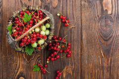Red currant, gooseberry in the basket Stock Photography