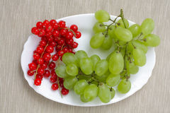 Red currant and grapes Stock Photos