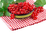 Red currant in a green bowl Royalty Free Stock Images