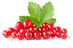 Red currant with green leaf Stock Photo