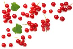Red currant with green leaf isolated on a white background. healthy food. top view Stock Photography