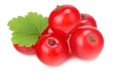 red currant with green leaf isolated on a white background. macro. healthy food royalty free stock image