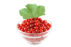 Red currant and green leaves in a glass bowl Stock Image