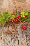 Red currant and green leaves on wooden background. Royalty Free Stock Image