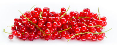 Red currant. Heap of berries on stem isolated on white Royalty Free Stock Photography