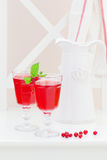 Red currant homemade lemonade Stock Photos