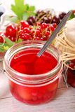 Red currant homemade preserve Royalty Free Stock Photography
