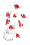 Red currant with an ice. Red currant and glass with an ice. Isolated on white background Royalty Free Stock Image