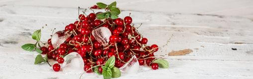 Red currant with ice and green leaves on white wooden background. Still life of food. Cubes of ice with berries. royalty free stock photography