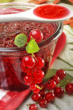 Red currant jam. A closeup view of a glass bowl of freshly made red currant jam royalty free stock image