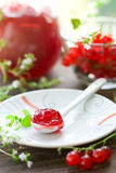 Red currant jam. Homemade red currant jam in a spoon royalty free stock photo